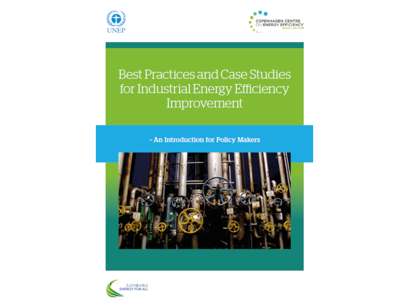 Best Practices and Case Studies for Industrial Energy Efficiency Improvement
