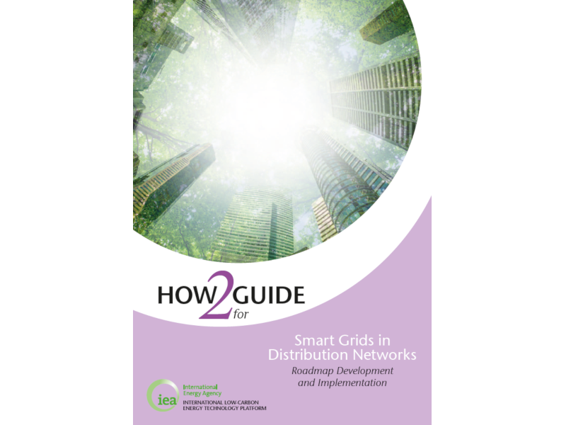 How2Guide for Smart Grids in Distribution Networks IEA